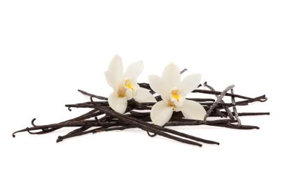 French Vanilla - Gold Star Blends